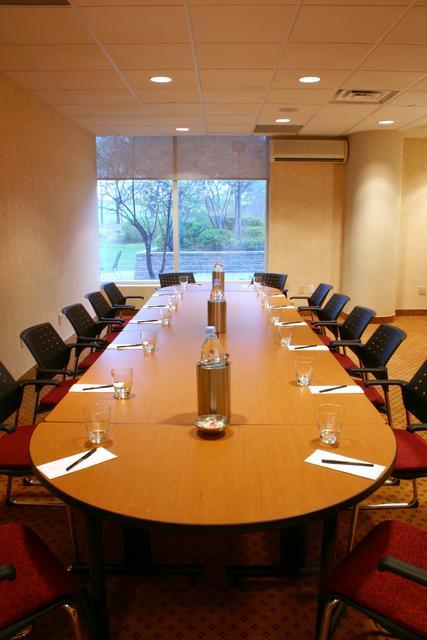 Company Boardroom Soundproofing